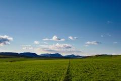 Il bello paesaggio islandese con verde sistema le montagne, il cielo e le nuvole Fotografia Stock