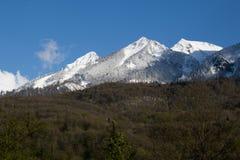 Il bello paesaggio verde scenico dell'estate con il picco di montagna nevoso completa sul fondo del cielo blu Fotografia Stock