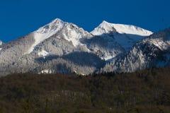 Il bello paesaggio verde scenico dell'estate con il picco di montagna nevoso completa sul fondo del cielo blu Fotografie Stock Libere da Diritti