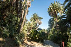 Il bello parco della villa Pallavicini, in Genua, l'Italia Fotografia Stock