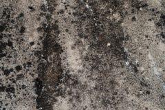 Il bello primo piano struttura la pietra della parete ed il fondo astratti della pavimentazione in piastrelle fotografia stock libera da diritti
