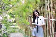 Il bello studente di college adorabile sveglio felice della High School della ragazza gode della lettura di tempo libero alla scu Immagine Stock Libera da Diritti