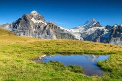 Il bello Tarn alpino, Grindelwald, Svizzera, Europa Fotografie Stock Libere da Diritti