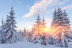 Il bello tramonto nelle colline pedemontana soleggiate delle alpi colpisce l'immaginazione dello spettatore Fotografia Stock Libera da Diritti