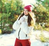 Il bello uso della donna del ritratto sport copre dell'inverno Immagine Stock