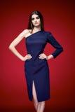 Il bello vestito sexy dalla donna copre il catalogo della raccolta Fotografie Stock
