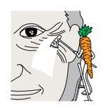 Il beneficio della metafora del beta-carotene in carota è fa lo sguardo umano y Fotografie Stock Libere da Diritti
