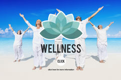 Il benessere si rilassa il concetto di esercizio dell'equilibrio della natura di benessere Fotografia Stock