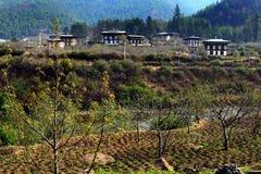 Il Bhutan rurale Immagine Stock