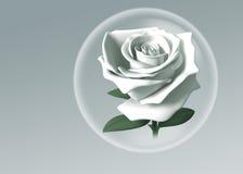 il bianco 3D è aumentato in sfera di vetro Immagini Stock Libere da Diritti