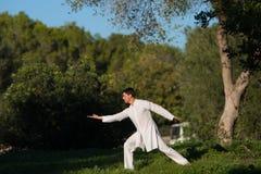 Il bianco ha vestito il Tai-'chi' di pratica dell'uomo nel parco Immagine Stock Libera da Diritti