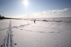 Il bianco, litorale di mare nevoso Fotografie Stock Libere da Diritti