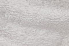 Il bianco simile a pelliccia della pelliccia di alta risoluzione ha strutturato Immagine Stock
