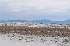 Il bianco smeriglia il monumento nazionale, New Mexico Fotografie Stock Libere da Diritti