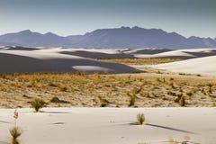 Il bianco smeriglia il New Mexico Immagine Stock