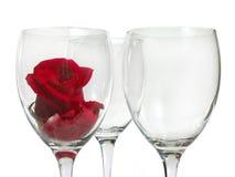 Il bicchiere di vino con è aumentato Fotografia Stock Libera da Diritti