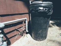 Il bidone della spazzatura fa l'atteggiamento (colore) fotografia stock libera da diritti