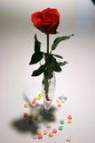 Il biglietto di S. Valentino è aumentato Immagine Stock Libera da Diritti