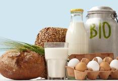 Il bio- alimento cuce con punti metallici la visualizzazione della finestra fotografia stock