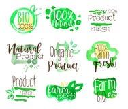 Il bio- promo sano dell'alimento firma l'insieme variopinto Immagine Stock Libera da Diritti