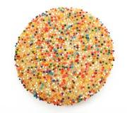 Il biscotto di zucchero con spruzza Fotografie Stock