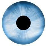 œil bleu d'isolement Photos stock
