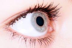 œil bleu dans l'instruction-macro Photo stock