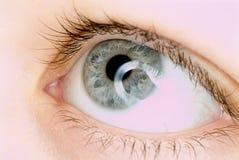 œil bleu dans l'instruction-macro Images stock
