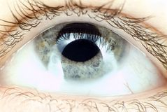 œil bleu dans l'instruction-macro Photos stock