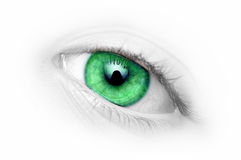 œil bleu de plan rapproché Photos libres de droits