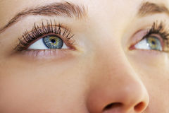 Il ` blu s della donna di bello sembrare perspicace osserva Fotografia Stock
