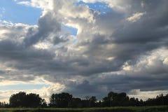 Il blu si è appannato il cielo con la linea di albero all'orizzonte Fotografie Stock