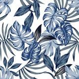 Il blu tropicale lascia il fondo senza cuciture Fotografia Stock