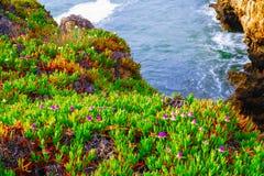 Il Boca fa l'inferno: formazione della scogliera vicino a Cascais in Portuga fotografia stock