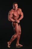 Il bodybuilder immagini stock