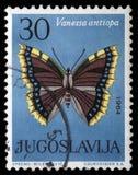 Il bollo stampato in Iugoslavia mostra la farfalla Fotografie Stock Libere da Diritti
