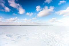 Il bordo del mare e delle onde congelati nell'orario invernale Immagini Stock Libere da Diritti