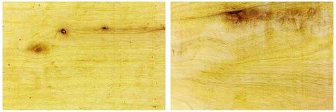 Il bordo del pino annoda il fondo dello spazio della copia del collage Fotografia Stock