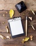 Il bordo di clip piano di disposizione con carta allineata, immerge a penna ed inchiostro su vecchio legno Fotografia Stock