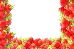 Il bordo o la struttura con l'estate rossa fresca fruttifica fragole isolate su fondo bianco Decorazione naturale per progettazio Fotografia Stock Libera da Diritti