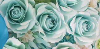 Il bouganvilla di carta di Flower Fotografia Stock