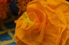 Il bouganvilla di carta di Flower Immagine Stock