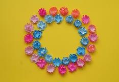 Il bouganvilla di carta di Flower Radura dei fiori colorati multi Fondo giallo pasqua Sorgente Giorno del `s del biglietto di S Fotografia Stock