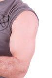 Il braccio maschio Fotografia Stock Libera da Diritti