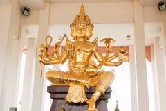 Il Brahma dorato Immagine Stock