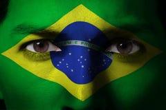Il Brasile Immagine Stock Libera da Diritti
