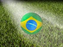 Il Brasile su erba Fotografie Stock Libere da Diritti