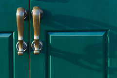 Il bronzo tratta le ombre della colata sulla porta verde Immagine Stock Libera da Diritti