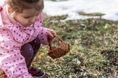Il bucaneve del tempo di raccolto del piccolo bambino della primavera fiorisce in primavera Immagini Stock Libere da Diritti