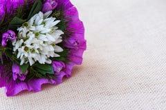 Il bucaneve fiorisce il mazzo con i ramoscelli dell'abete Fotografia Stock Libera da Diritti